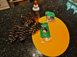 Thanksgiving Pinecone craft supplies